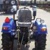 Трактор T244(24 л.с., 3 цилиндра, БЕЗ ГУР, КПП (3+1)х2) 3725