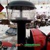 Трактор DW 244AHTD 12458