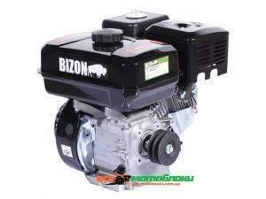 Двигатель бензиновый Bizon 170F