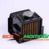 Радиатор (латунь) с крышкой GZ - 195N 33880