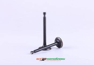 Клапаны (пара) - 177F - Premium