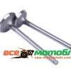 Клапаны (пара) Zubr (L-120mm) - 195N - Premium