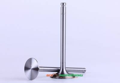 Клапаны (пара) - 190N - Premium