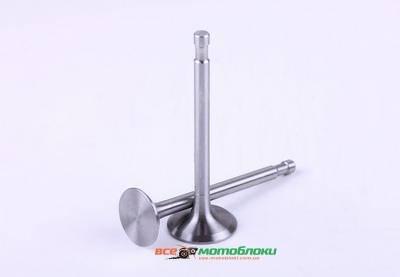 Клапаны (пара) ?8 mm - 180N